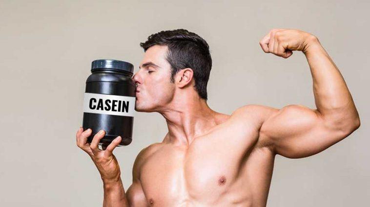 Casein Protein Benefits